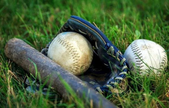 Картинка спорт, мяч, бита
