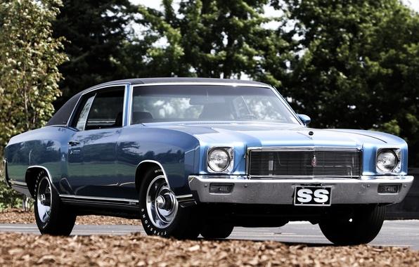 Картинка синий, Chevrolet, Шевроле, 1971, передок, 454, Muscle car, Мускул кар, листва.деревья, Monte Carlo, Монте Карло
