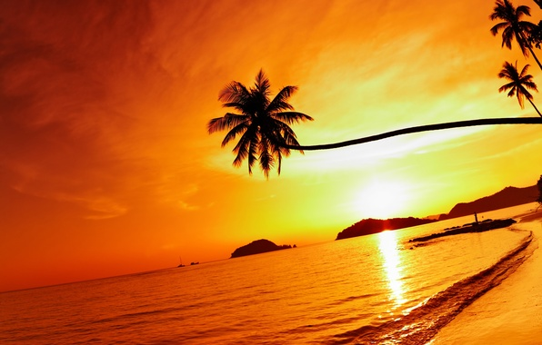 Картинка море, пляж, небо, солнце, облака, пейзаж, природа, пальмы, берег, Океан, Таиланд, Thailand, beach, sky, sea, …