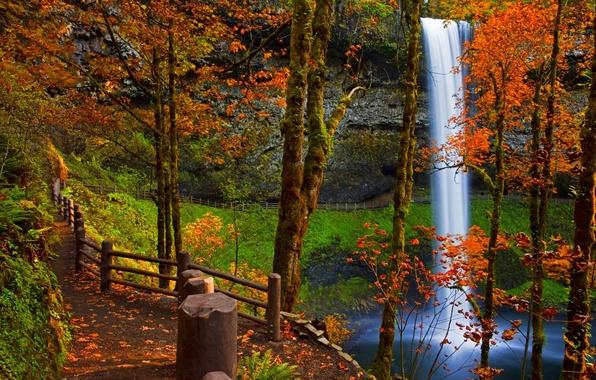 Картинка дорога, осень, лес, листья, вода, деревья, пейзаж, горы, природа, река, скалы, водопад, colors, colorful, rock, …