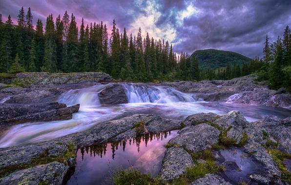 Картинка лес, небо, вода, облака, река, вечер, Норвегия, потоки