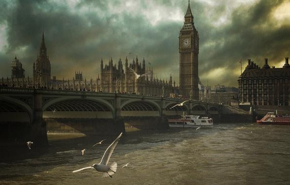 Картинка птицы, тучи, мост, река, Англия, Лондон, чайки