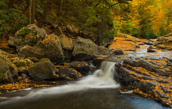 Картинка осень, лес, камни, водопад, Пенсильвания, каскад, Pennsylvania, Государственный парк Огайопайл, Ohiopyle State Park, Meadow Run …