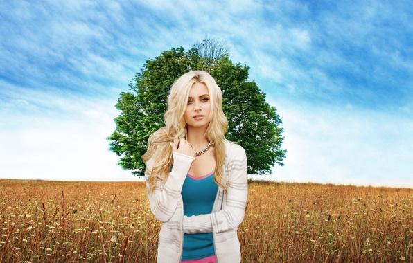 Картинка поле, небо, девушка, дерево, луг, блондинка, красивая