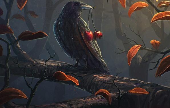 Картинка листья, вишня, птица, ветка, арт, ворона