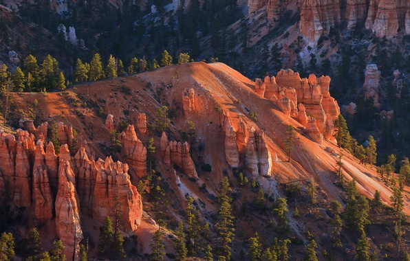 Картинка деревья, горы, скалы, склон, Юта, США, Bryce Canyon National Park