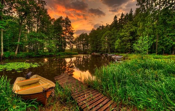 Картинка лес, небо, трава, вода, пейзаж, закат, природа, озеро, отражение, вид, grass, forest, sky, landscape, sunset, …