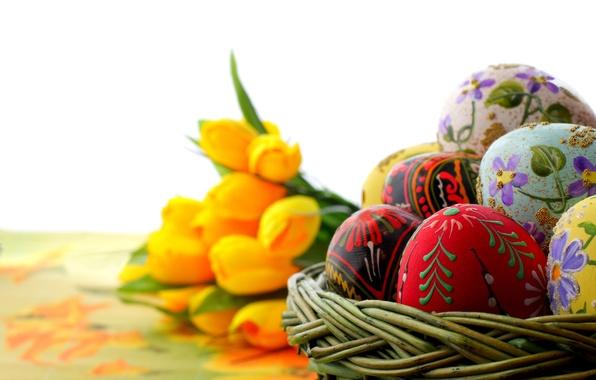Картинка макро, праздник, яйца, фокус, пасха, тюльпаны, орнамент, роспись, жёлтые, Easter, крашеные