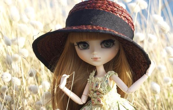 Картинка игрушка, шляпа, кукла, шляпка