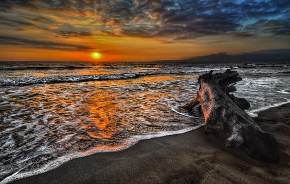 Картинка море, волны, солнце, закат, природа, фото, дерево, рассвет