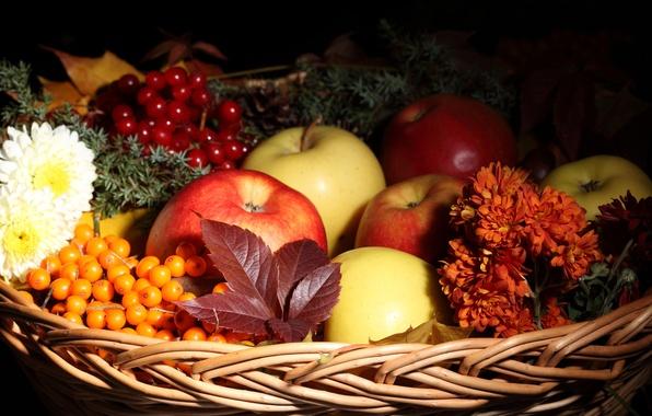 Картинка осень, листья, цветы, корзина, яблоки, фрукты, облепиха