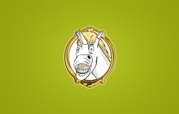 Картинка улыбка, лошадь, портрет, минимализм, белая, Единорог, unicorn, смешная морда, светлый зеленый фон