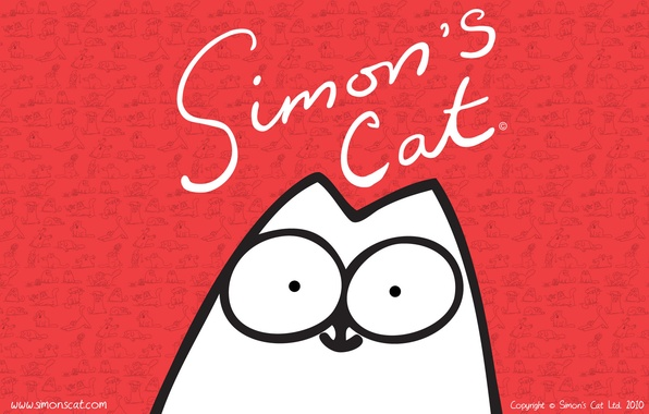 Фото обои simon, саймона, cat, кот