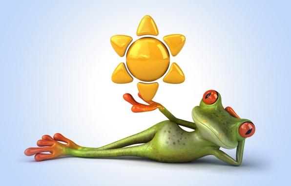 Cartoon frog Stock Photos Royalty Free Cartoon frog