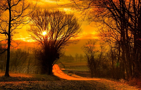 Картинка дорога, поле, осень, лес, небо, листья, солнце, деревья, закат, природа, восход, colors, colorful, forest, road, …
