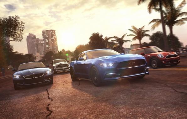 Картинка пальмы, гонка, Mustang, Ford, Mini, Cooper, BMW, Ubisoft, Game, The Crew