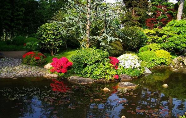 Картинка деревья, цветы, пруд, Франция, Париж, сад, кусты, Albert-Kahn Japanese gardens