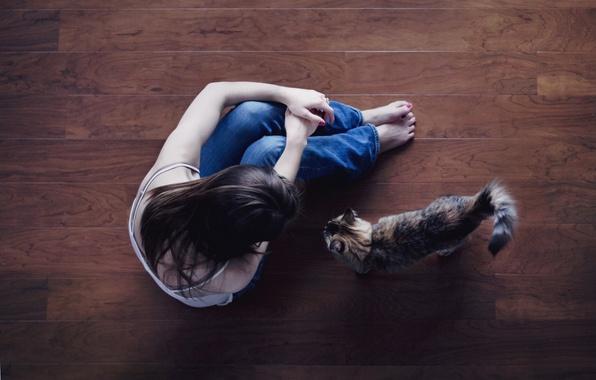 Картинка кошка, кот, девушка, фон, widescreen, обои, ноги, настроения, джинсы, брюнетка, пол, wallpaper, сидит, широкоформатные, background, …