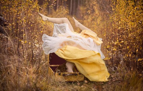 Картинка осень, лес, девушка, платье, чемодан, ноги вверх