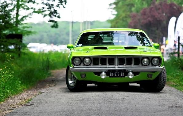Картинка green, 1971, салатовый, мускул кар, вид спереди, muscle car, Barracuda, Plymouth, барракуда, плимут