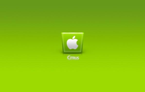 Картинка компьютер, apple, телефон, ноутбук, гаджет, citrus
