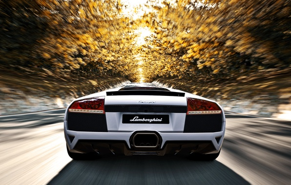 Картинка дорога, осень, солнце, деревья, скорость, Lamborghini, белая, murcielago, lp640, ламборгини, мурселаго