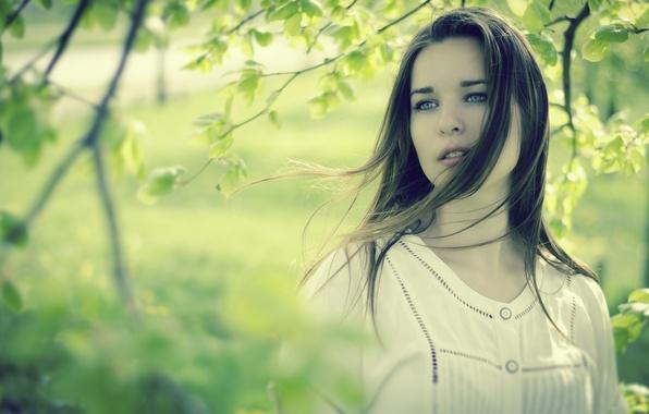 Картинка взгляд, листья, девушка, природа, лицо, лист, зеленый, фон, ситуации, дерево, ветер, обои, настроения, женщина, волосы, …