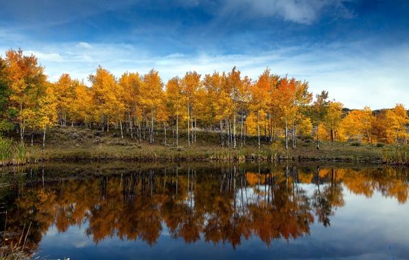 Картинка осень, небо, облака, деревья, озеро
