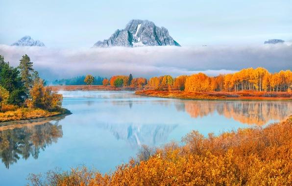 Картинка осень, лес, вода, облака, горы, туман, пар, США, национальный парк, Гранд-Титон, штат Вайоминг, Oxbow Bend