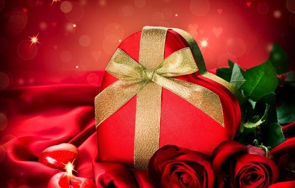 Картинка любовь, цветы, розы, лепестки, valentine's day