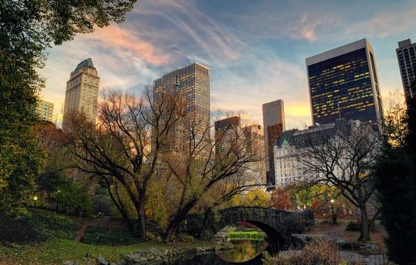 Картинка деревья, мост, природа, город, река, здания, дома, Нью-Йорк, небоскребы, вечер, USA, США, Манхэттен, New York, …
