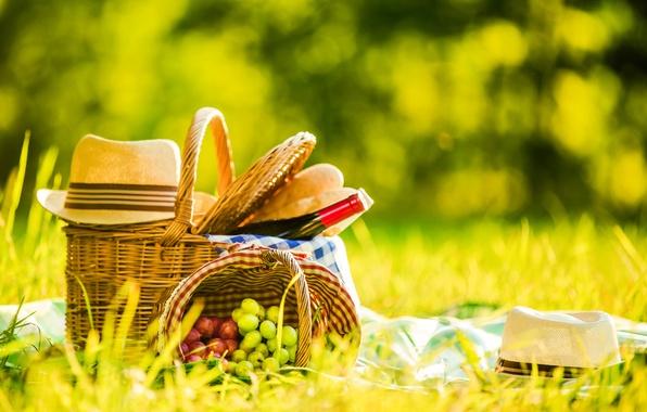 Фото обои шляпа, бутылка, на природе, вино, поляна, боке, хлеб, пикник, зелень, корзина, трава, виноград