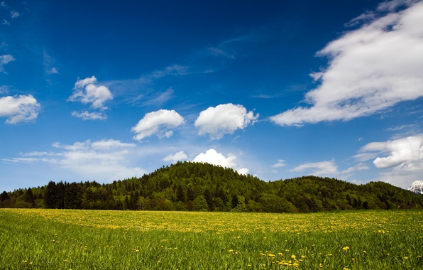 Картинка зелень, трава, green, холмы, grass, австрия, Spring Nature, austria, carinthia austria, landscape