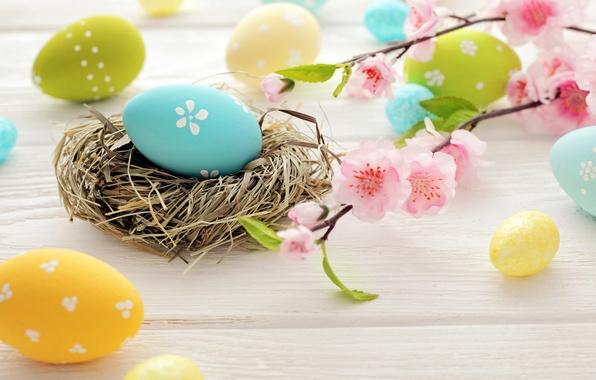 Картинка цветы, яйца, Пасха, гнездо, flowers, spring, Easter, eggs