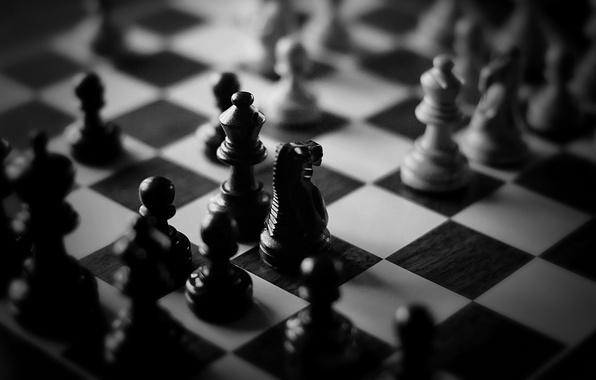 Картинка белое, шахматы, черное