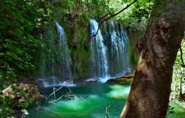 Картинка зелень, листья, вода, ветки, камни, дерево, водопад, мох, Турция, Анталья, Куршунлу, Kursunlu Waterfall Nature Park