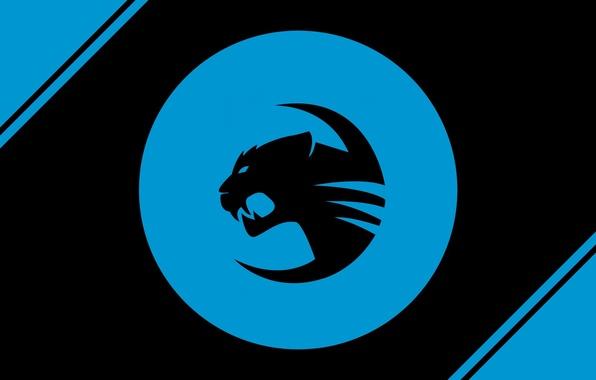 Картинка logo, blue, roccat team