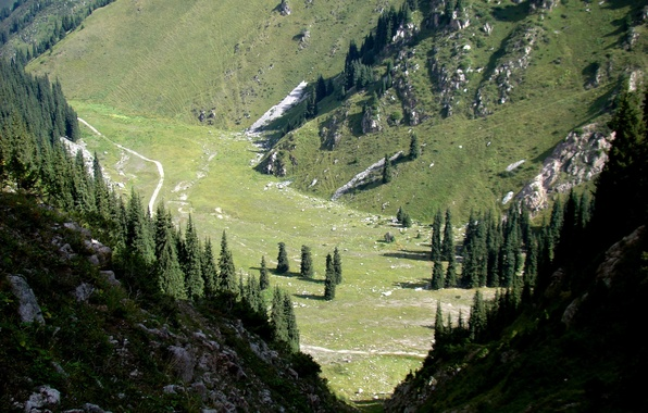 Картинка горы, ущелье, Казахстан, лунная поляна