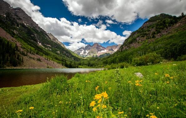 Картинка лес, трава, облака, деревья, цветы, горы, озеро, скалы, долина, США, Colorado, Ruby