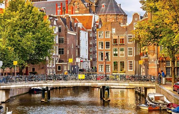 Картинка осень, деревья, мост, город, река, люди, здания, дома, лодки, Амстердам, канал, Нидерланды, архитектура, Amsterdam, велосипеды, …