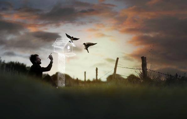 Картинка птицы, человек, домик
