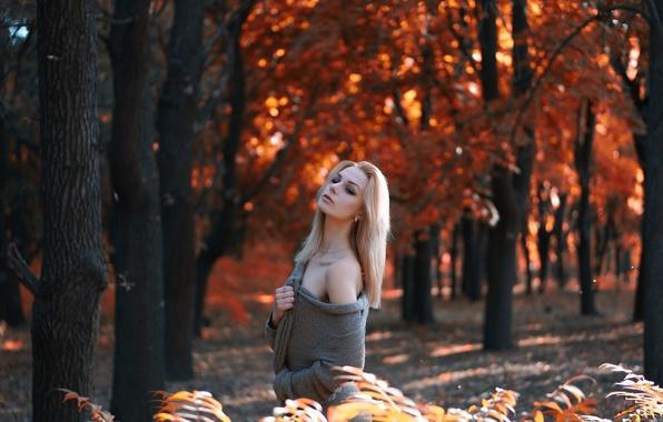 Картинка осень, листья, девушка, деревья, фон, серьги, желтые, блондинка, красивая, кофта, посадка, боке, Алена Соколова