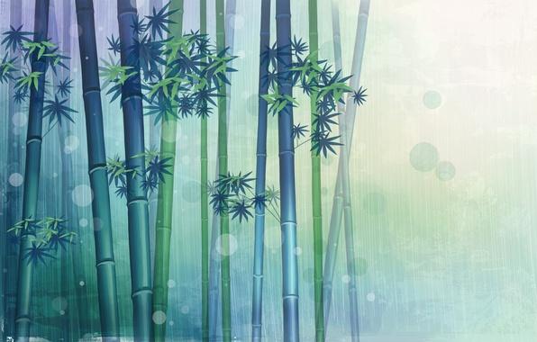 Картинка фон, рисунок, бамбук