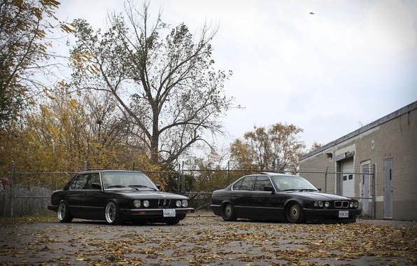 Картинка осень, листья, тюнинг, бмв, BMW, диски, классика, tuning, autumn, E34, stance, E28