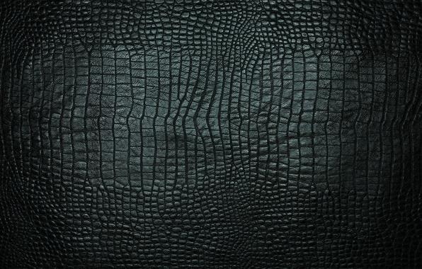 Обои текстура, кожа, крокодил, черная картинки на рабочий ... Чешуя Текстура