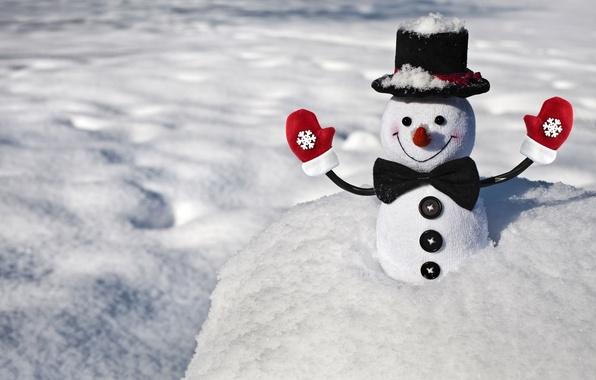 Снеговик из варежки