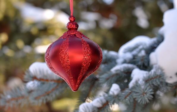 Картинка снег, игрушка, елка, новый год, рождество, украшение