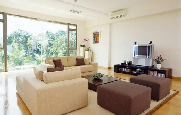 Картинка листья, деревья, цветы, комната, диван, интерьер, растения, кресло, телевизор, окно, подушка, ваза, квартира