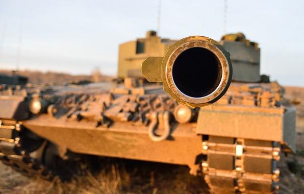 Картинка дуло, танк, боевой, Leopard-C2
