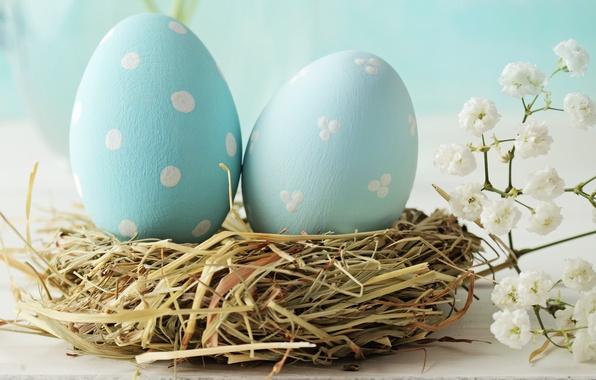 Картинка праздник, пасха, гнездо, цветочки, яички
